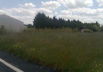 image terrain Terrain à bâtir de 603 m² à SANDILLON (45)
