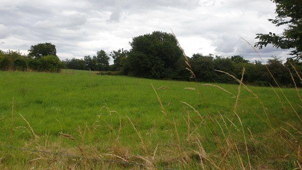 Photo du terrain à bâtir de 1244 m² <br><span>TAIZE-AIZIE(16)
