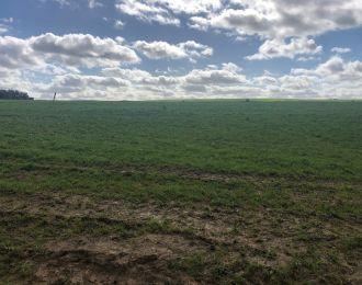 Photo du terrain à bâtir de 1645 m² <br><span>FONTENAY-LE-COMTE(85)