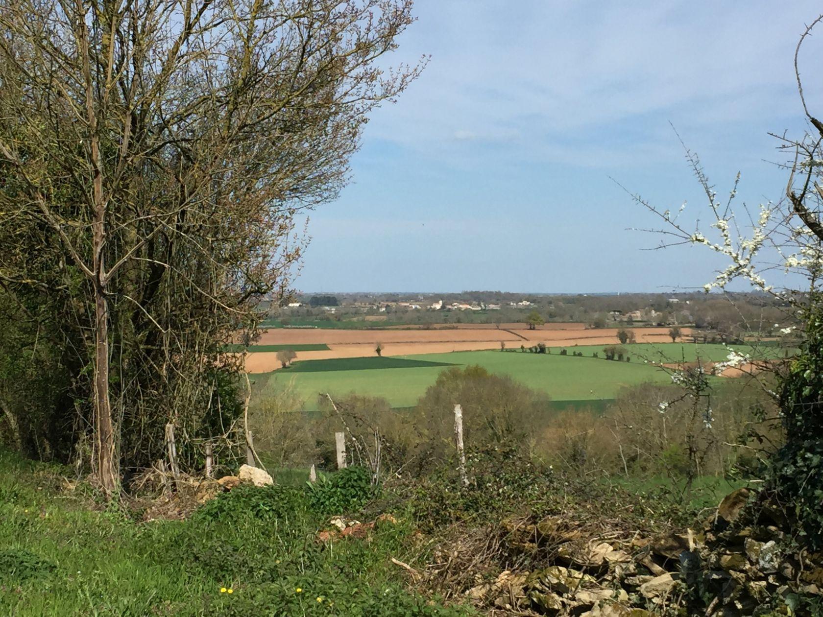 Photo du terrain à bâtir de 1414 m² <br><span>AIGONNAY(79)