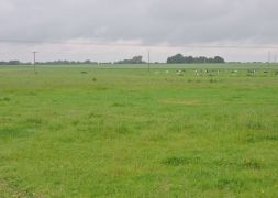 Terrain Agence d'Isneauville, Terrain 652m²