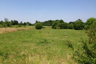 image terrain Terrain de 419 m² à BLAYE (GIRONDE - 33)