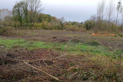 image terrain Terrain de 441 m² à SAINT-LAURENT-D'ARCE (GIRONDE - 33)