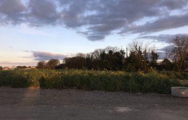 Photo du terrain n°31 de 378 m² à MAUZE-SUR-LE-MIGNON