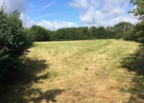 Photo du terrain à bâtir de 736 m² <br><span>PLEUMARTIN(86)