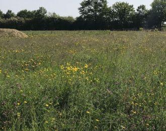 Photo du terrain à bâtir de 831 m² <br><span>SAINT-MAURICE-LE-GIRARD(85)