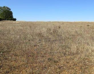 Photo du terrain à bâtir de 2500 m² <br><span>TAIZE-AIZIE(16)