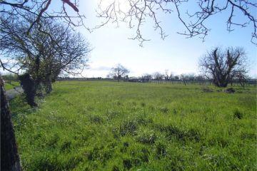 Image du terrain à bâtir à SAINT-ROMAIN-DE-BENET
