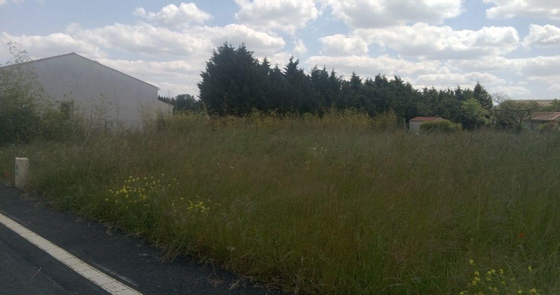 image Maison 90.23 m² avec terrain à CHALETTE-SUR-LOING (45)