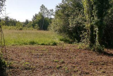 image terrain Terrain de 574 m² à GAURIAGUET