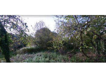 Photo du terrain à bâtir de 307m²<br> à LA CELLE-LES-BORDES (78)