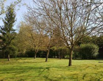 Photo du terrain à bâtir de 1085 m² <br><span>SAINT-GEORGES-LES-BAILLARGEAUX(86)