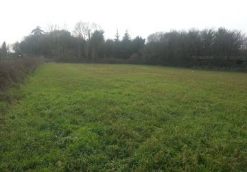 image terrain Terrain à bâtir de 329 m² à BELLEGARDE (45)