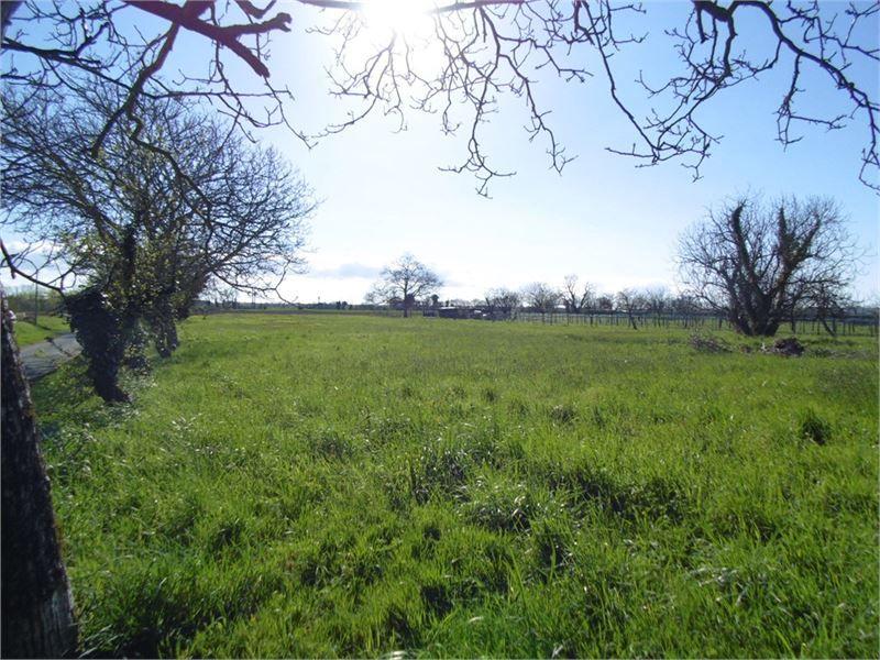 Photo du terrain à bâtir de 426 m² <br><span>LA CRECHE(79)