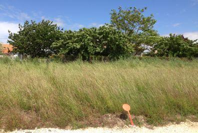 image terrain Terrain de 2000 m² à MARCILLAC