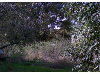 Photo du terrain à bâtir de 391m²<br> à LA CELLE-LES-BORDES (78)
