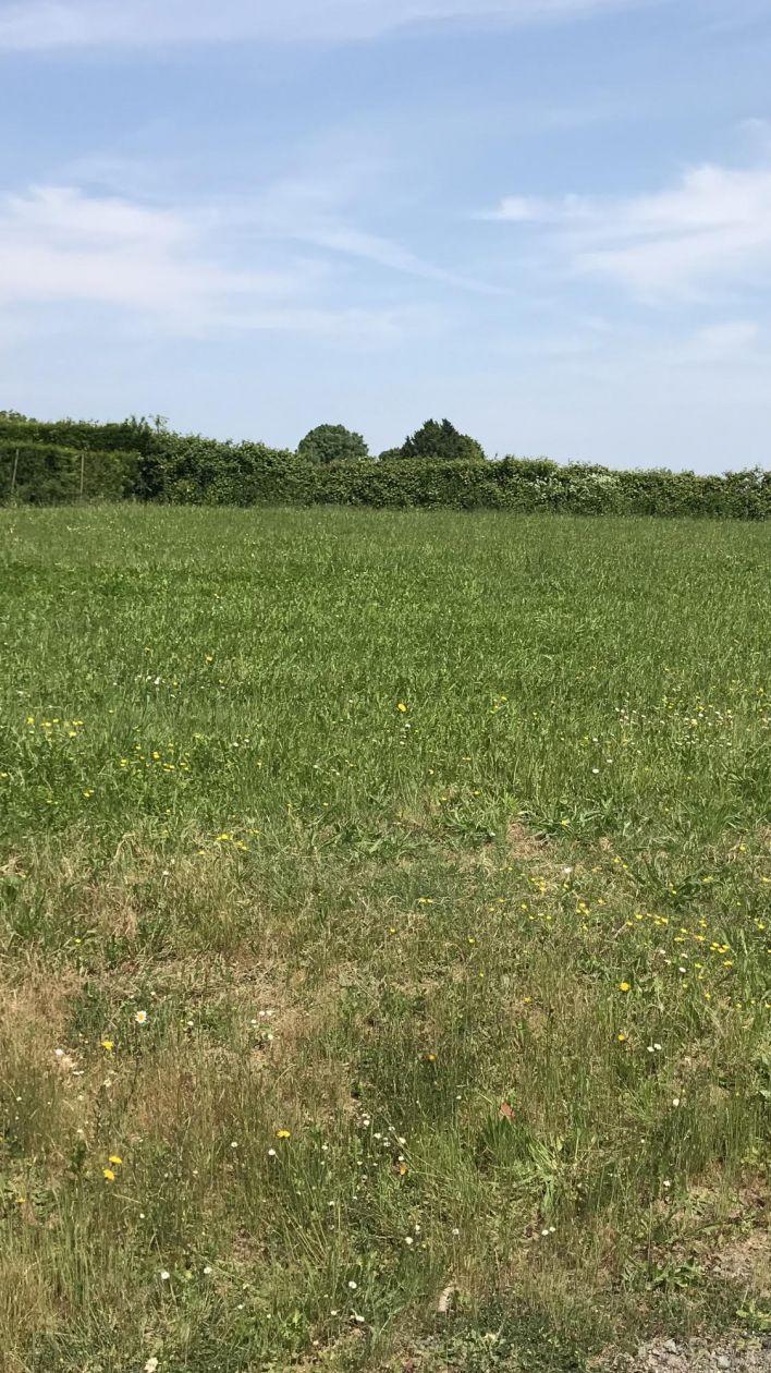 Photo du terrain à bâtir de 943 m² <br><span>LA TARDIERE(85)