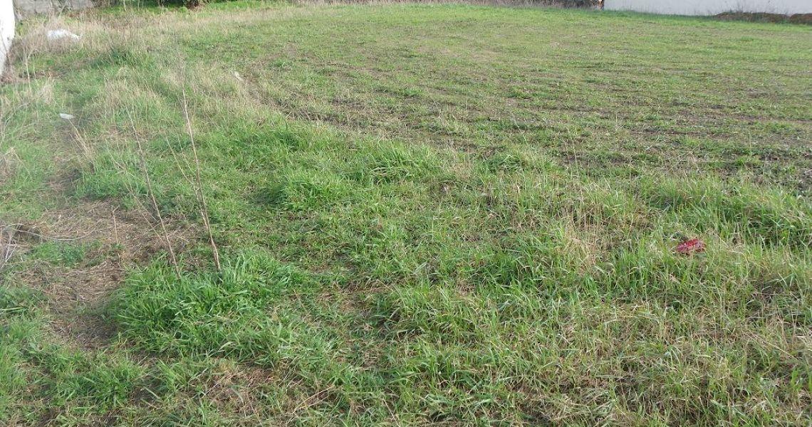 image Terrain à bâtir de 1000 m² à VILLEMANDEUR (45)