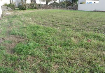 image terrain Terrain à bâtir de 2200 m² à SUEVRES (41)