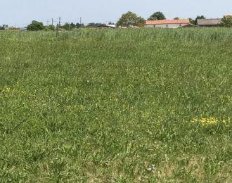Photo du terrain à bâtir de 750 m² <br><span>LA TARDIERE(85)