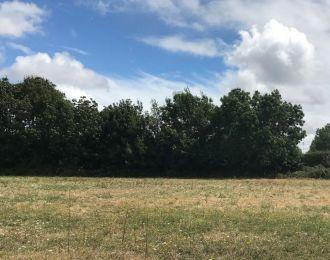 Photo du terrain à bâtir de 733 m² <br><span>CHASNAIS(85)