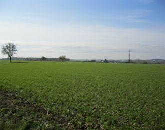 Photo du terrain à bâtir de 554 m² <br><span>AUGE(79)