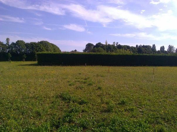 Photo du terrain à bâtir de 730 m² <br><span>VILLEFAGNAN(16)