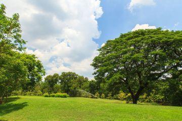 Image du terrain à bâtir à CHARRON
