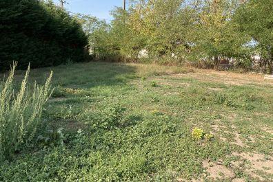 image terrain Terrain de 620 m² à IZON