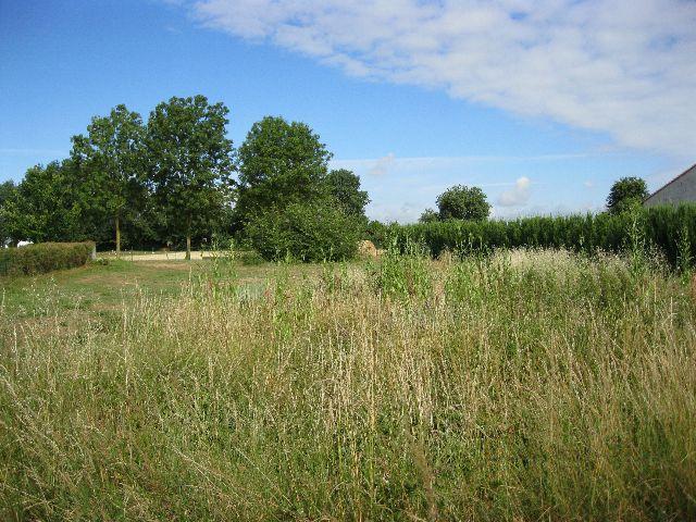 Photo du terrain à bâtir de 555 m² <br><span>BEAUVOIR-SUR-NIORT(79)