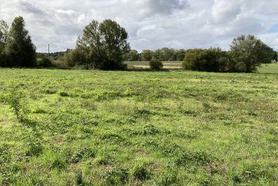 image terrain Terrain de 438 m² à BARON (GIRONDE - 33)
