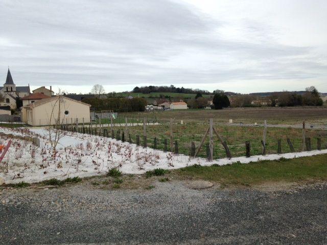 Photo du terrain à bâtir de 394 m² <br><span>MARIGNY-BRIZAY(86)