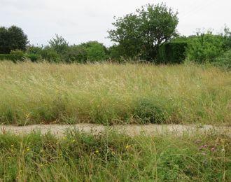 Photo du terrain à bâtir de 588 m² <br><span>SAINT-SATURNIN(16)
