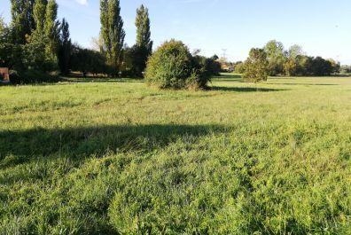 image terrain Terrain de 488 m² à CUBNEZAIS
