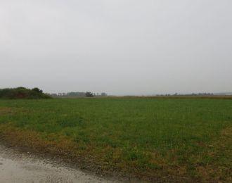 Photo du terrain à bâtir de 895 m² <br><span>SAINT-ANGEAU(16)