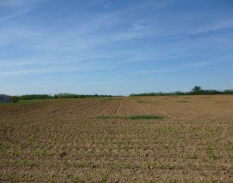 Photo du terrain à bâtir de 525 m² <br><span>NEUVILLE-DE-POITOU(86)
