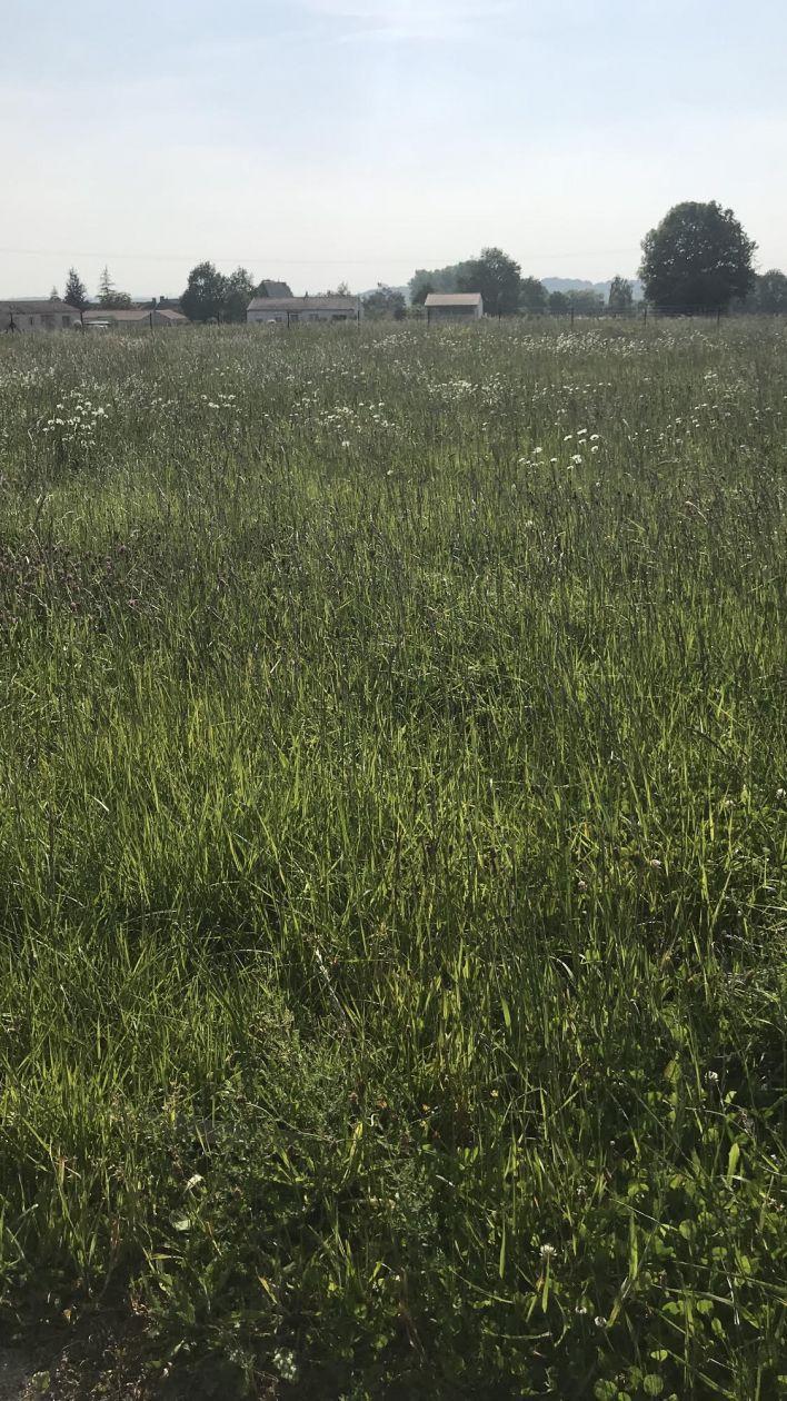 Photo du terrain à bâtir de 770 m² <br><span>SAINT-CYR-DES-GATS(85)