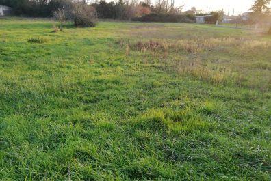image terrain Terrain de 502 m² à PRIGNAC-ET-MARCAMPS