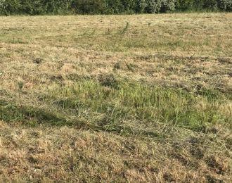 Photo du terrain à bâtir de 581 m² <br><span>NALLIERS(85)