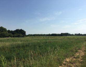 Photo du terrain à bâtir de 553 m² <br><span>LAVOUX(86)