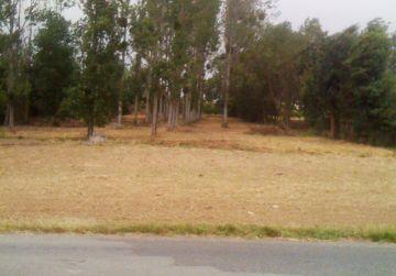 image terrain Terrain à bâtir de 642 m² à BRIARE (45)