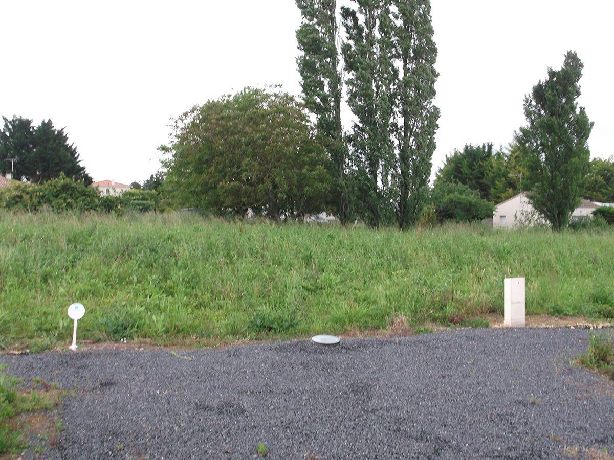 Photo du terrain à bâtir de 780 m² <br><span>SAINT-GEORGES-LES-BAILLARGEAUX(86)