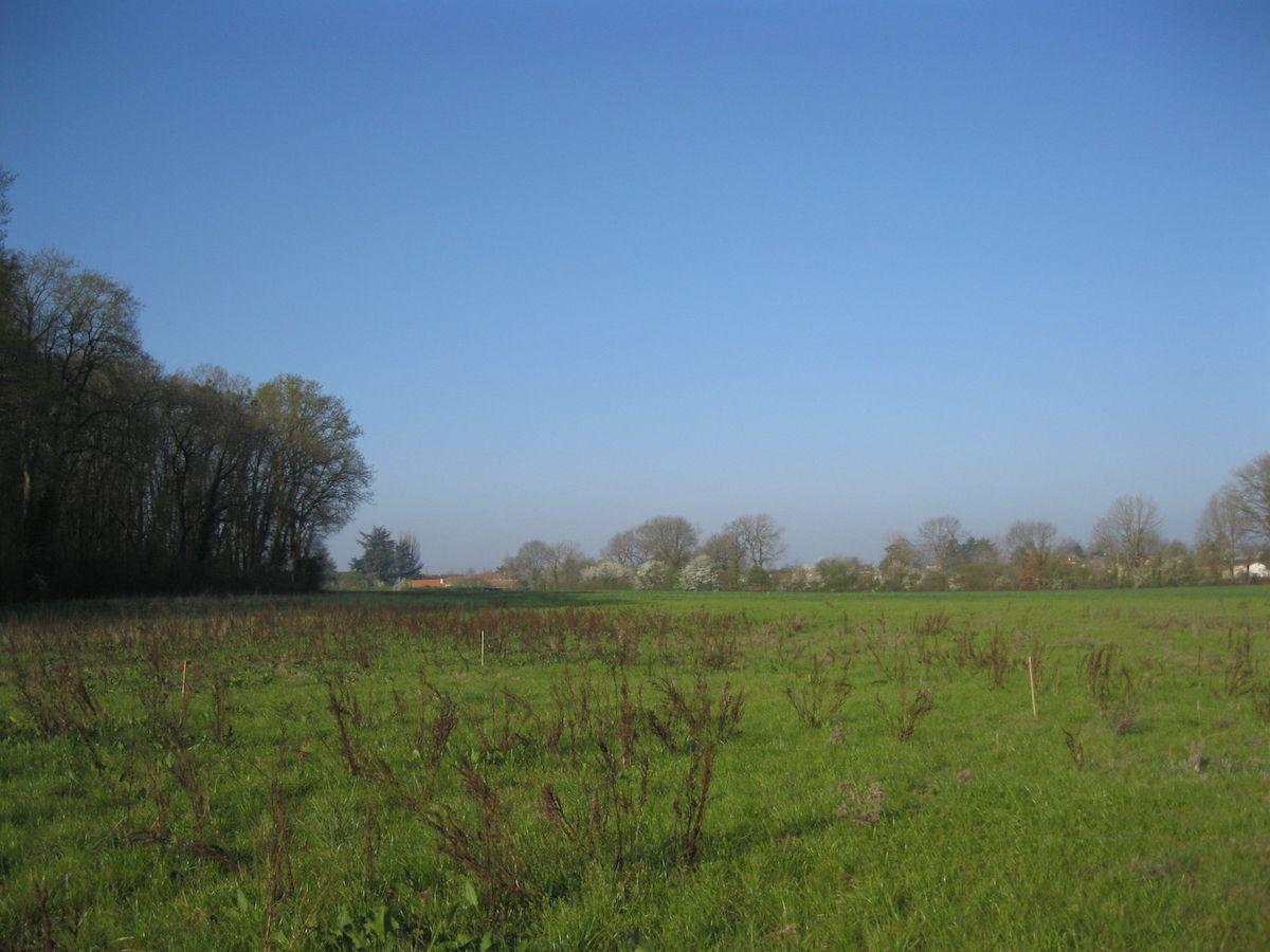 Photo du terrain à bâtir de 685 m² <br><span>SOUDAN(79)